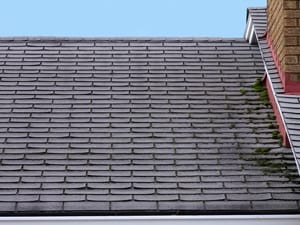 Damaged Roofing Shingles